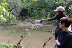 Maranda shows the erosion from the old streambed that has developed in the last couple of years.